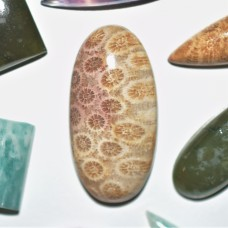 Fossil Coral 30x15mm Oval Cabochon