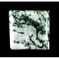 Tree Agate 15mm Square Gemstone Cabochon